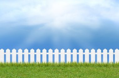 grass on fence